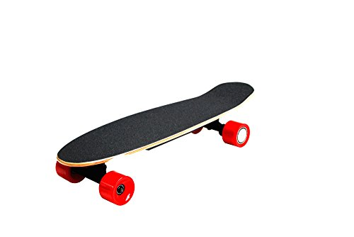 gesutra elektro skateboard schwarz. Black Bedroom Furniture Sets. Home Design Ideas