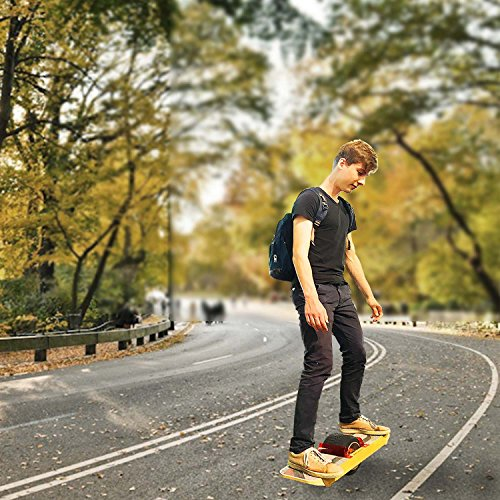 one wheel electric skateboard. Black Bedroom Furniture Sets. Home Design Ideas