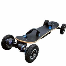 TZTED Elektro Skateboard